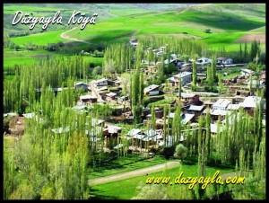 Köyümüzün Poşadaşı'ndan Görünümü